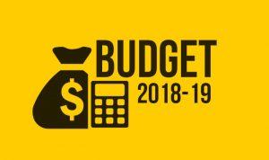 Budget-2018-19-3